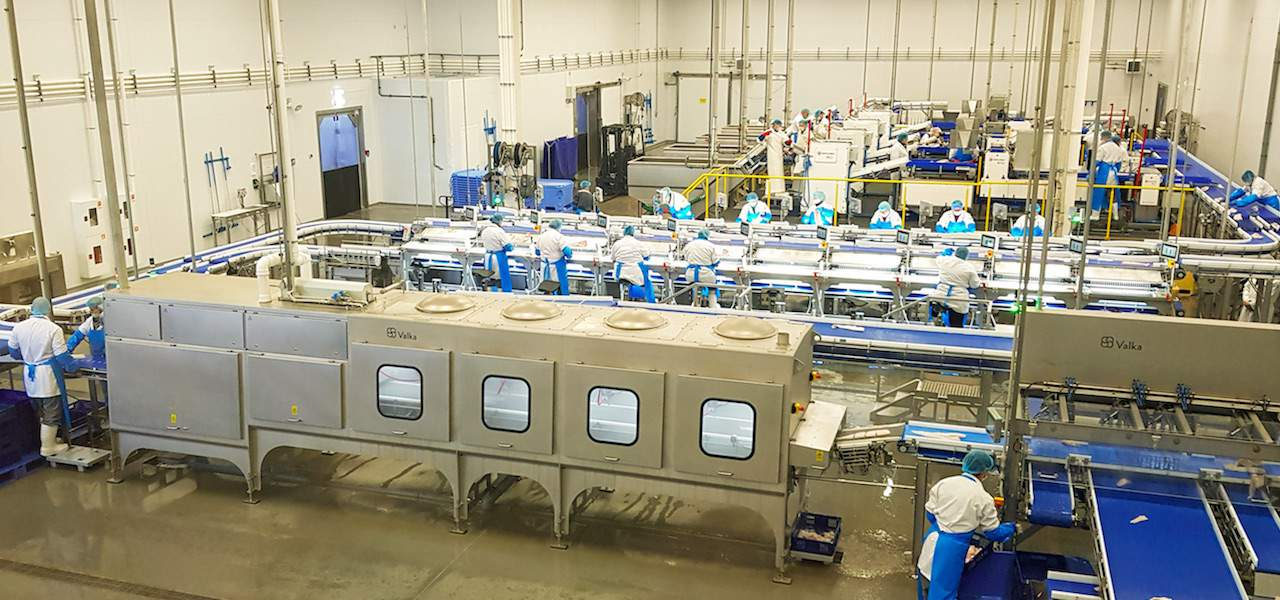 High-tech processing plant opens in Murmansk