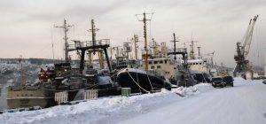 Murmansk's landings down in 2019