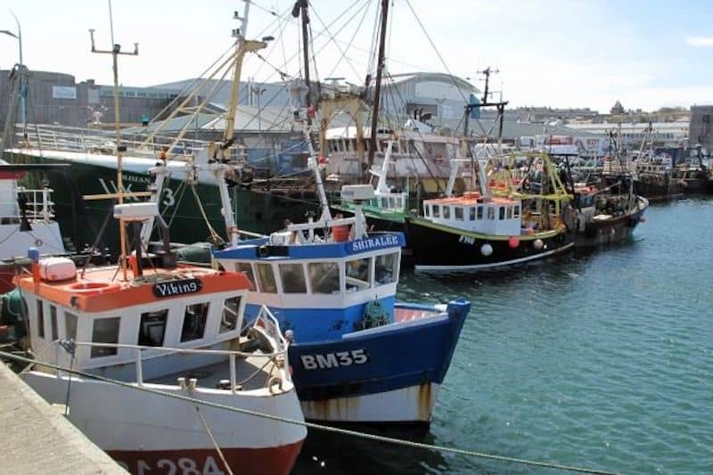 Developing a participatory approach to management of fishing in UK offshore MPAs