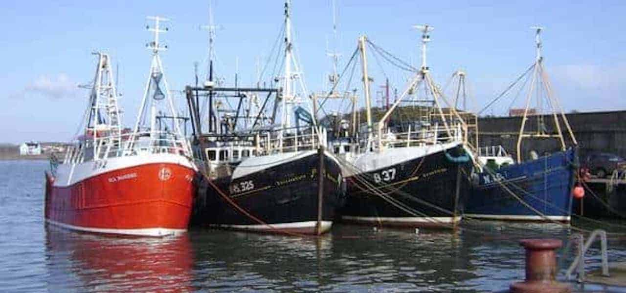 £1.5 million lifeline for Northern Ireland fishing industry