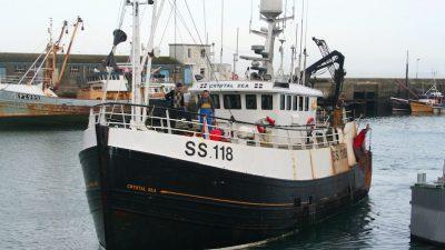 Newlyn's Seafood Champions