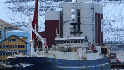 Capelin at the heart of Iceland-Faroes dispute