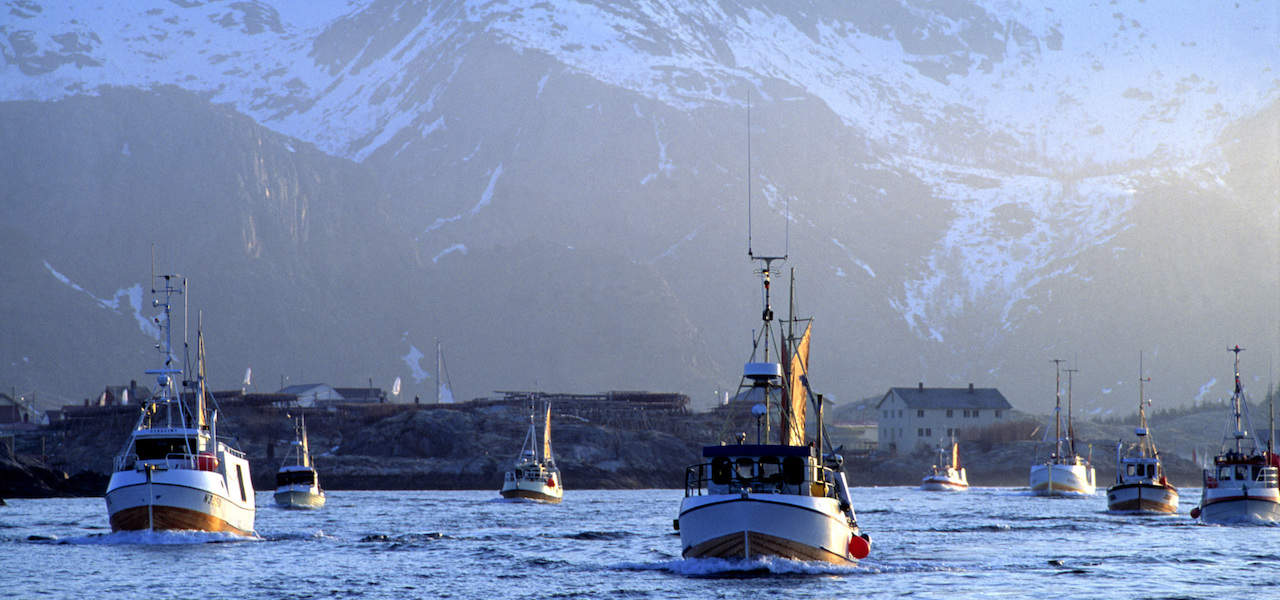 Norwegian industry vows to keep seafood on the table