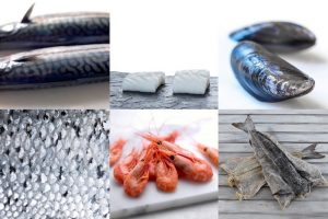Norway has seen a record half-year for seafood exports. Image: Norwegian Seafood Council - @ Fiskerforum