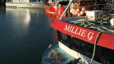 Under-10 trawler fits Notus