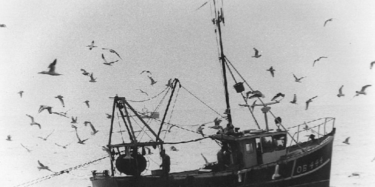 The SFF has warned the EU27 not to pile pressure onto the UK fishing industry - @ Fiskerforum