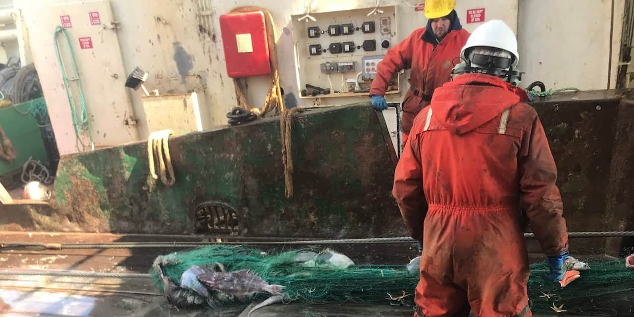 Canada's offshore harvesters help reduce ghost fishing