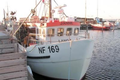 NF 169 –  JANNE – ©FiskerForum - Foto: Ole-Skjold