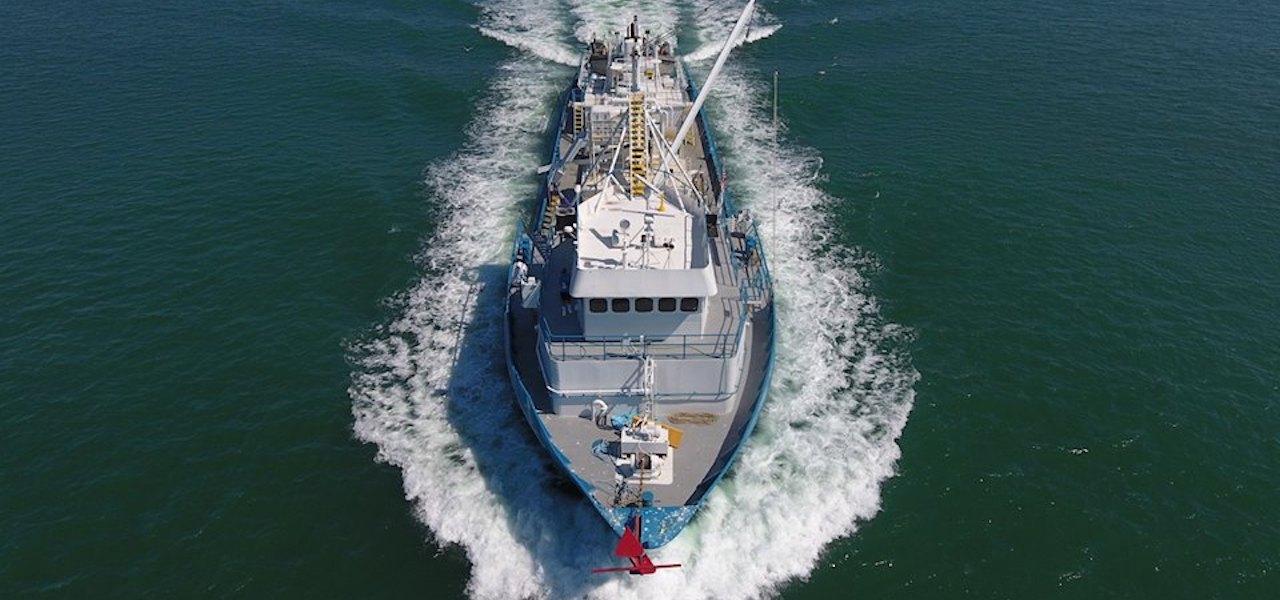 Gulf menhaden fishery gets MSC certification