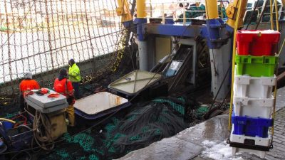 Council aims for sustainable catch limits for 2020