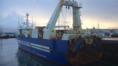 Fleet back at sea