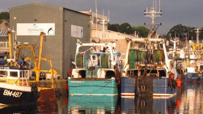 Plymouth leads on fishing industry support
