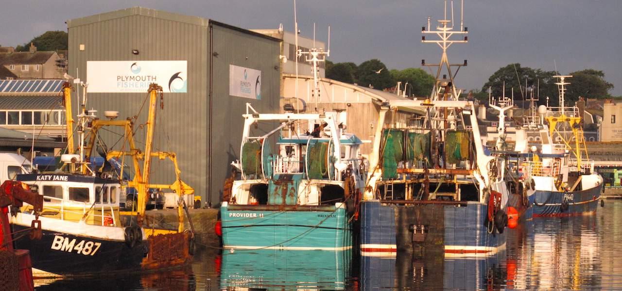 UK consultation on fishing opportunities