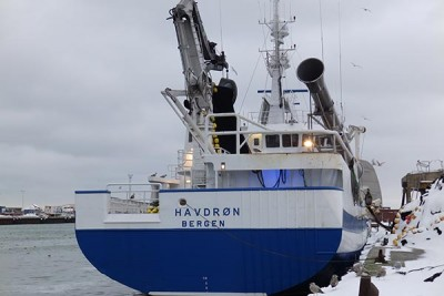 H 81BN –  Havdrøn – ©FiskerForum - Foto: PmrA