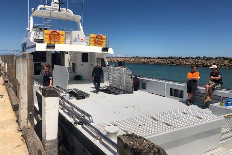 Australia's biggest rock lobster catcher