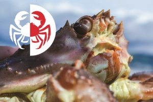 Roman Linin has been appointed as PrimCrab's new general director - @ Fiskerforum