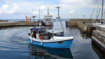Compensation for Baltic cod and herring fishermen welcomed