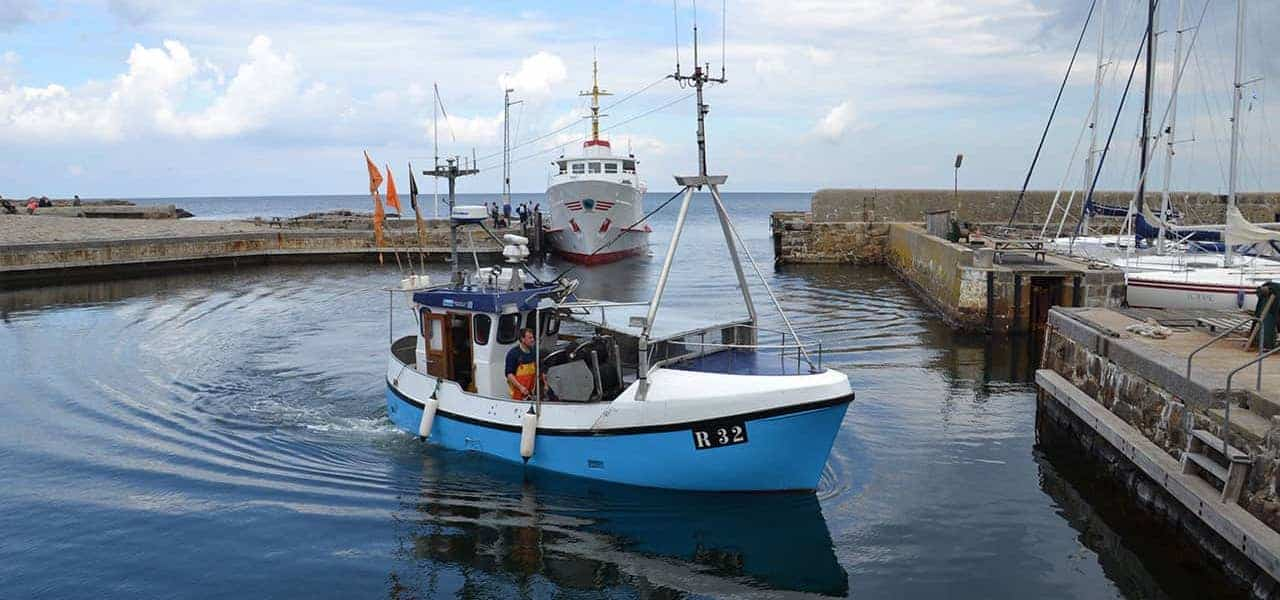Read more about the article Compensation for Baltic cod and herring fishermen welcomed