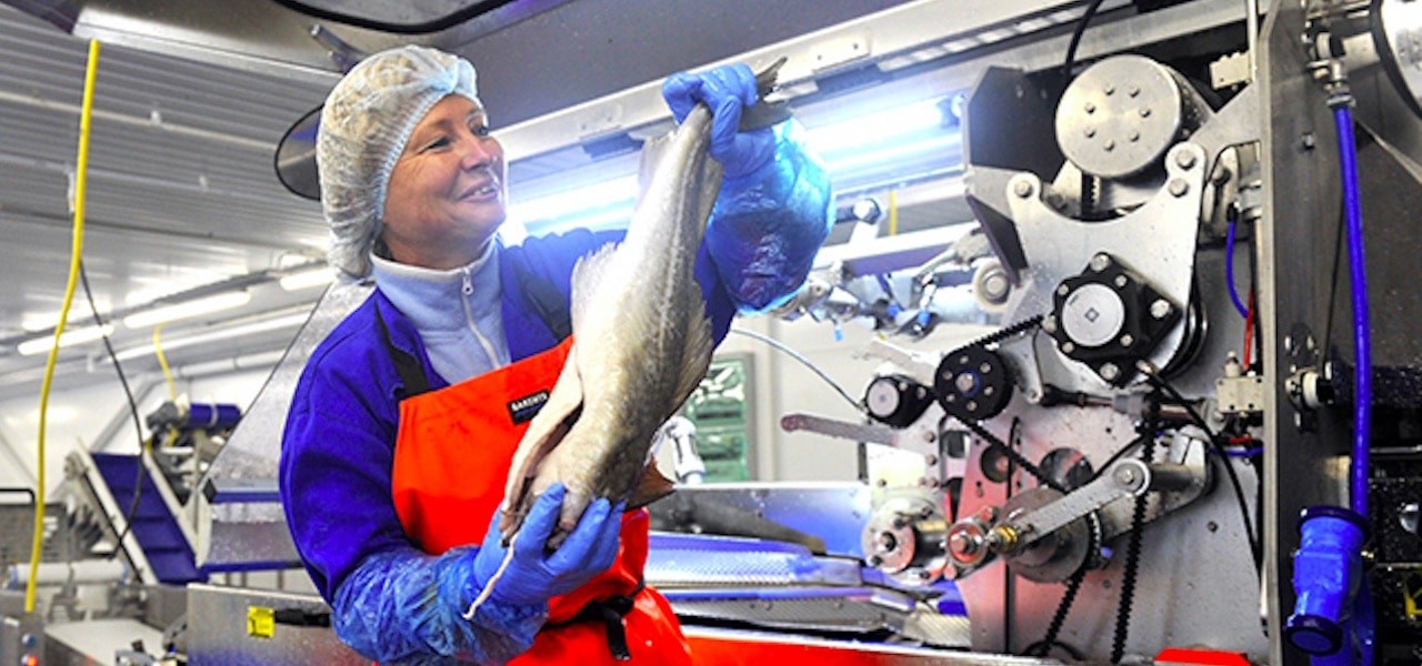 Russian Fishery Company commissions Murmansk factory