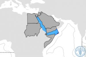 The proposed Red Sea and Gulf of Aden RFMO area - @ Fiskerforum