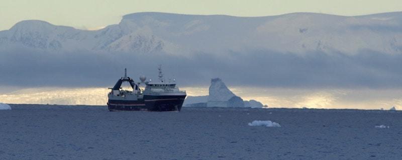 Rimfrost's krill oil ready for European market