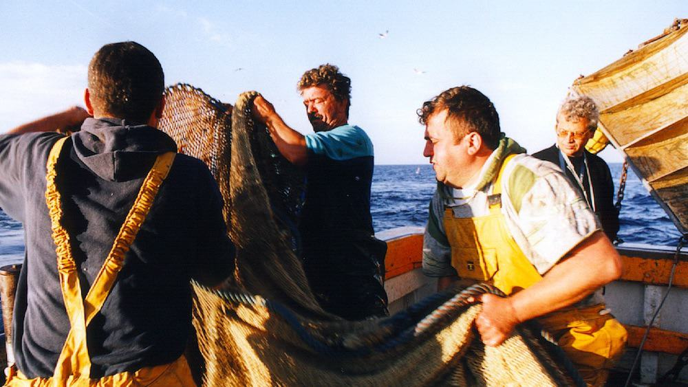 Read more about the article 2021 catch limits not good enough, says Europêche