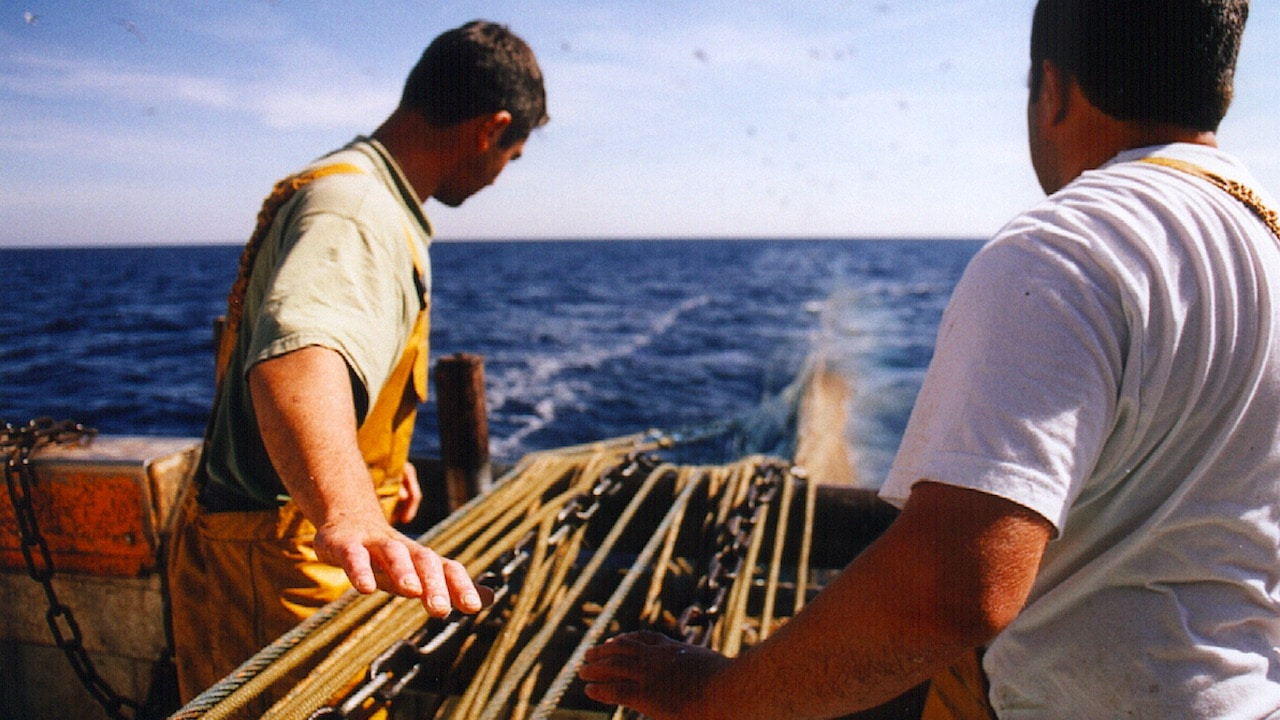 Mediterranean fisheries need faster, bold action