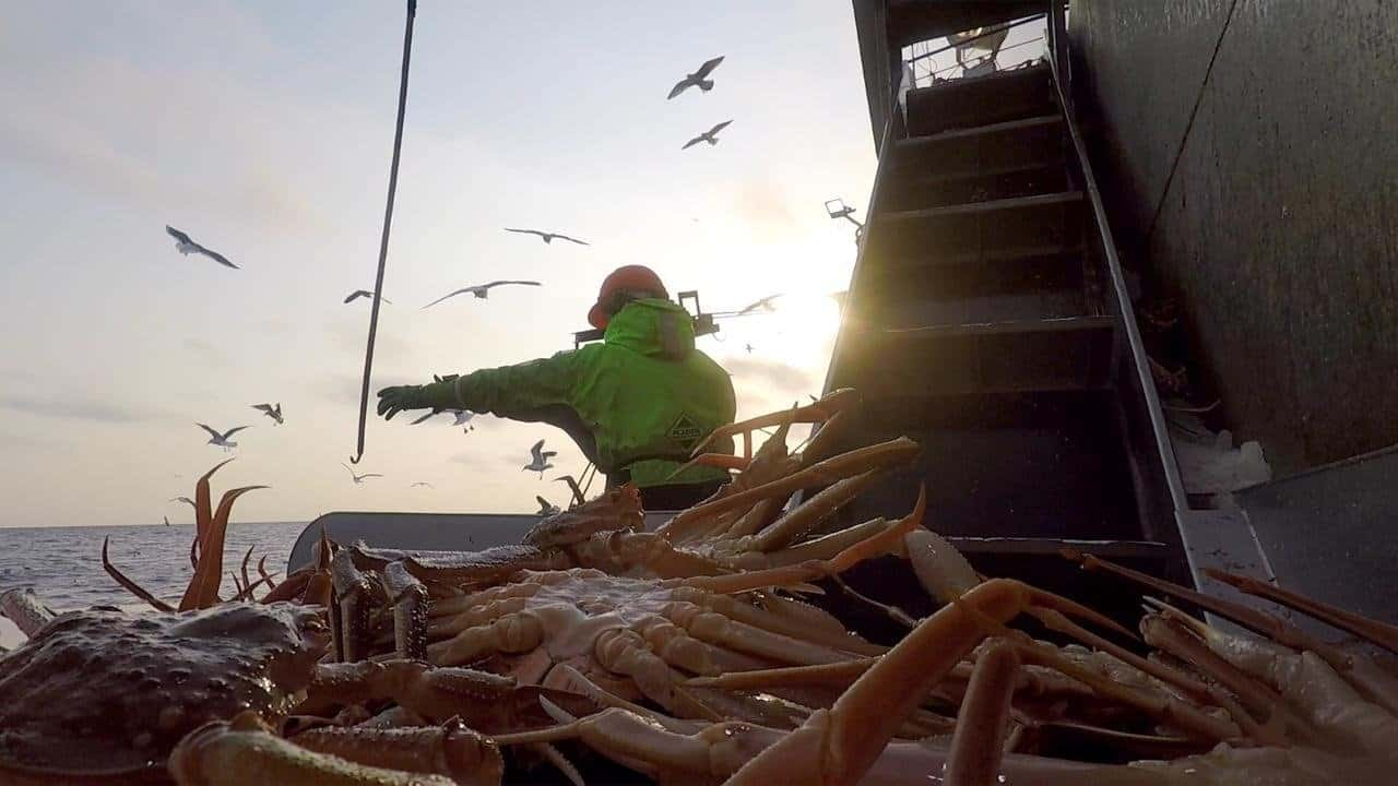 Russian Crab put more than 40 million rubles into Covid-19 prevention
