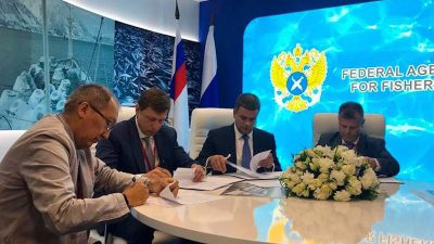New shipyard to build in Russian Far East