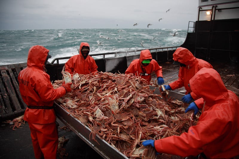 Russian red king crab fishery gets MSC label