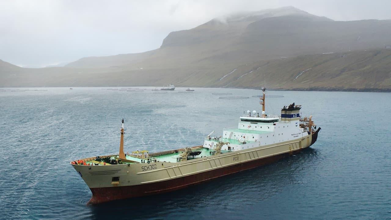 Dutch pelagic fleet goes for Vónin 2300