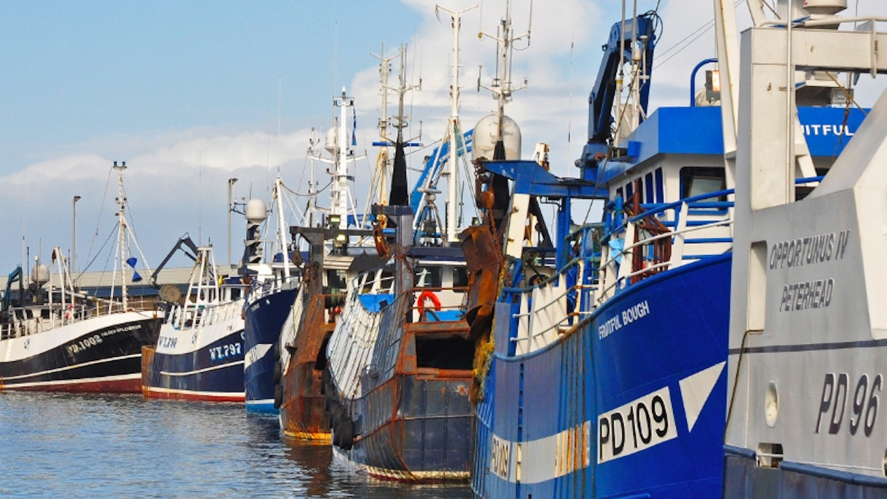 SFF calls for governments to appoint fisheries ministers