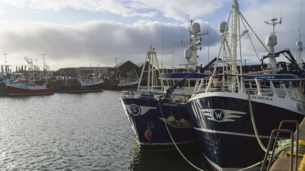 Scottish fishing in crisis