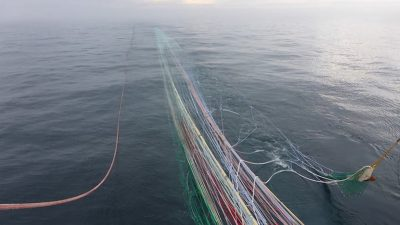 New Helix trawl pays dividends