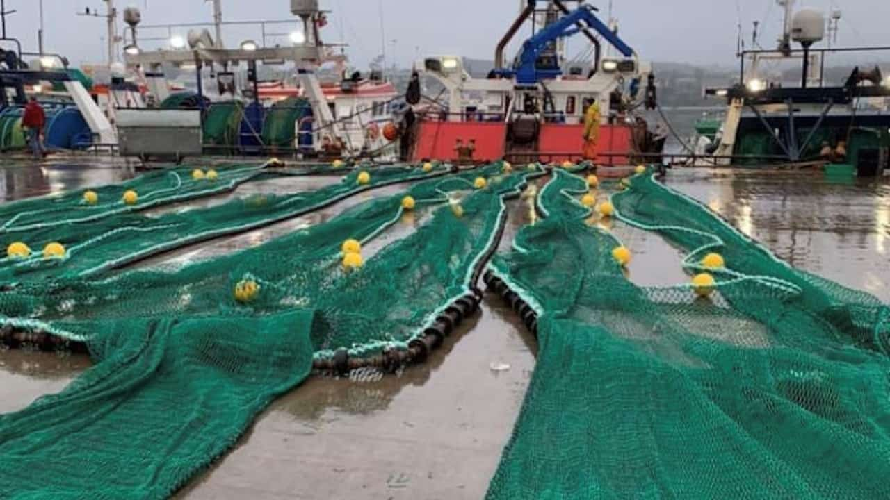 Read more about the article Successful new design prawn gear