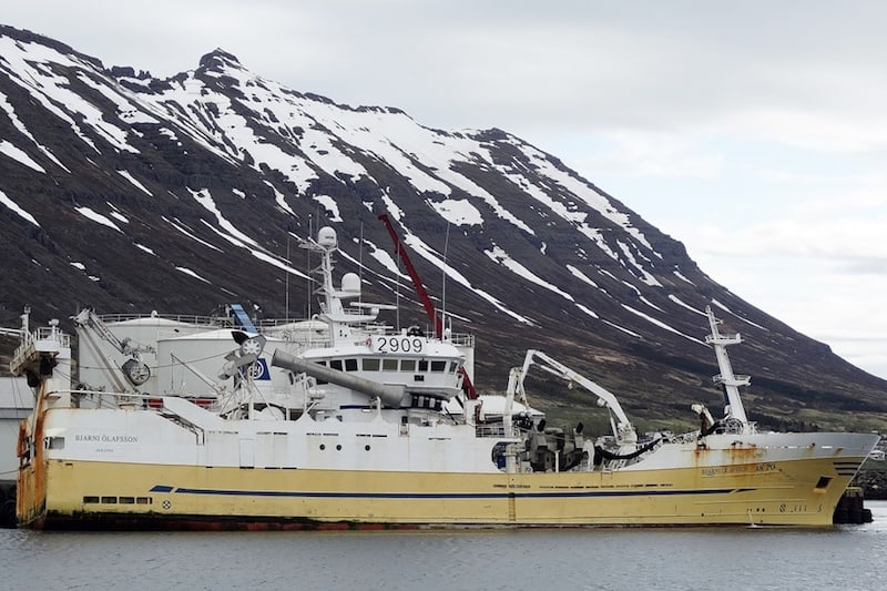 One herring season over, another starting