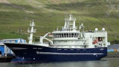 Heavy fishing on blue whiting in Icelandic EEZ