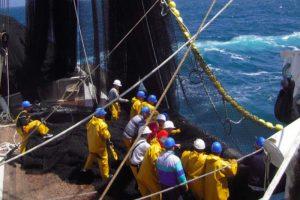On board one of Sapmer's tuna purse seiners - @ Fiskerforum
