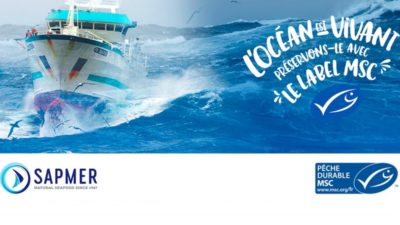 MSC certification renewed for Kerguelen and Crozet Islands toothfish