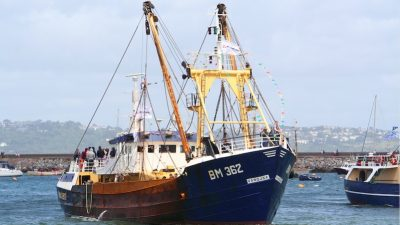UK scallop sector establishes voluntary levy to fund research