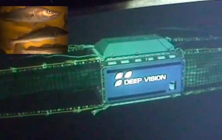 Deep Vision up for Nor-Fishing award