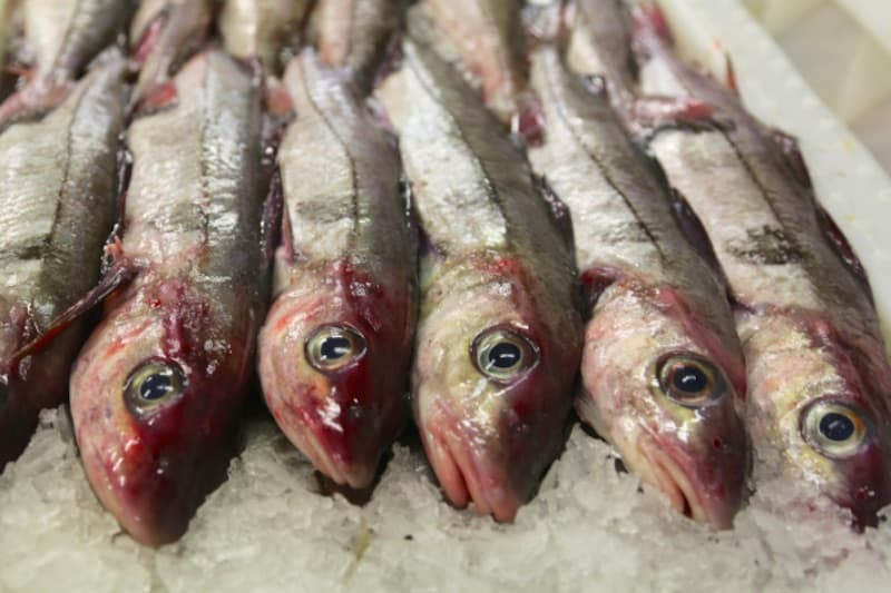 Getting it wrong on Scottish haddock