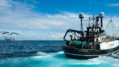 UK fishing returns £1 billion turnover