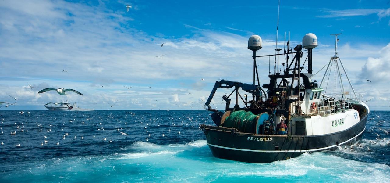 UK fishing returns £1 billion turnover
