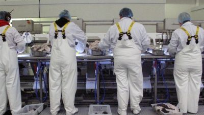 EU workforce is 'essential' for Scotland's economy