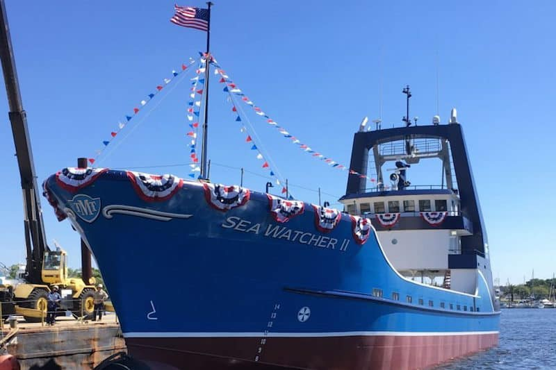 Read more about the article Clam catcher from Florida yard