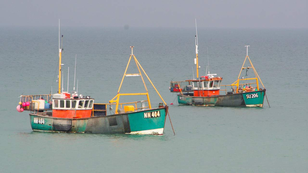 Read more about the article First instalment of government cash for UK fishing industry support