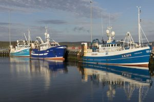 Shetland is the second biggest port in the UK for whitefish landings after Peterhead - @ Fiskerforum