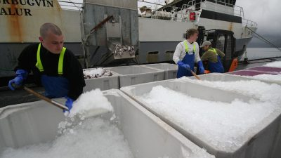 Faroese fisheries reform bill goes to parliament