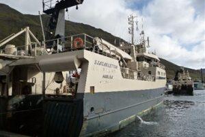 Good mackerel season for pair trawlers.  Photo: - @ Fiskerforum